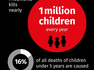 Pneumonia kills nearly 1 million children every year 16% of all deaths of children under 5 years are caused by pneumonia